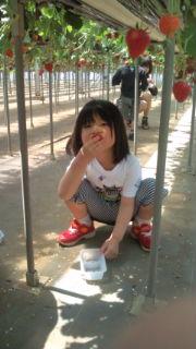 Blog20120505-1.jpg